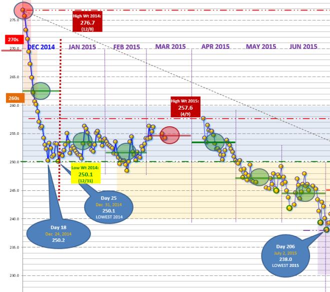 Dec-Jun 2015 half chart